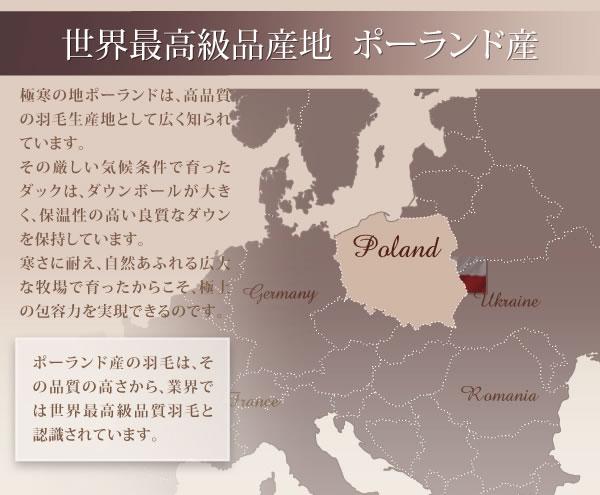 ポーランド産ホワイトダック90% ロイヤルゴールドラベル羽毛布団8点セット【Fiji】フィジー プレミアム敷布団タイプを通販で激安販売
