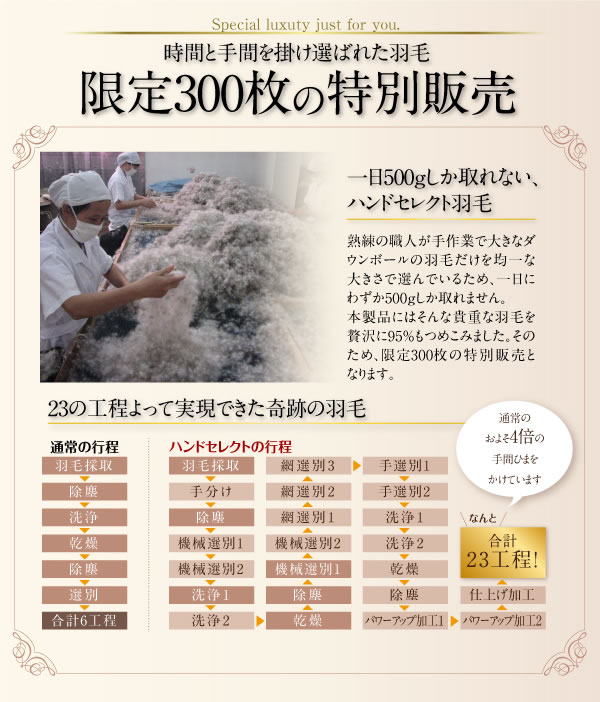 日本製防カビ消臭 プレミアムゴールドラベル 羽毛掛布団 【Noiva】ノイヴァを通販で激安販売