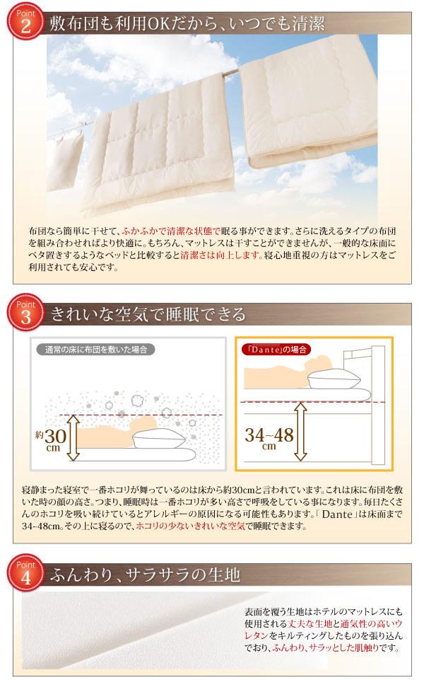通気性床板仕様スリム棚付きガス圧式収納ベッド【Dante】ダンテを通販で激安販売